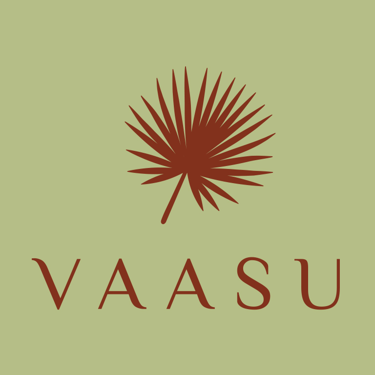 Vassu logo creation
